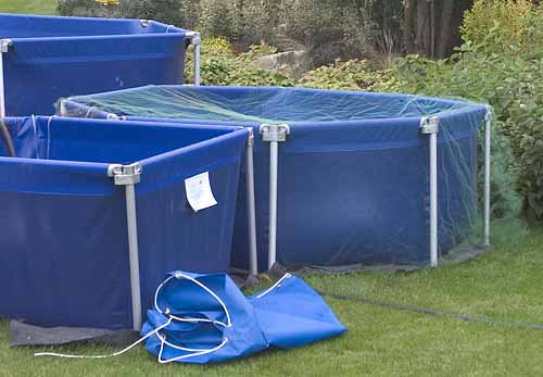 Fish vats for temporary housing of koi and other pondfish for Temporary koi pond